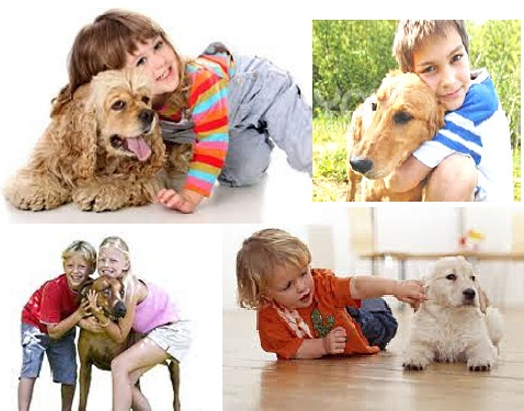 Dog interaction with children warning signs