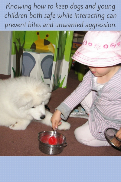Teaching Children How To Behave Around Dogs