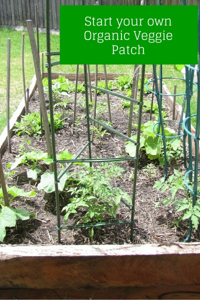How To Start Your Own Organic Veggie Patch