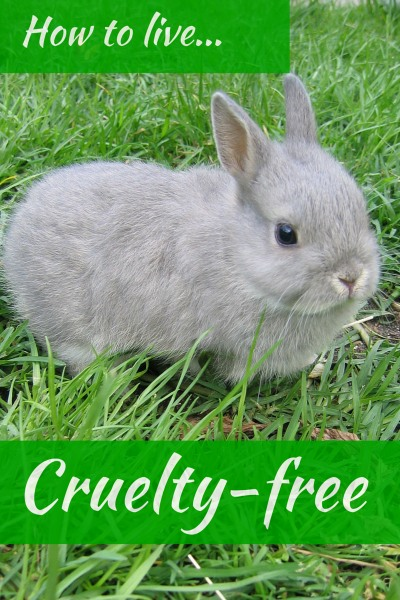 How To Live Cruelty-Free Checklist