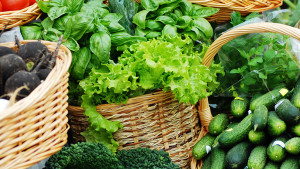 organic food and safe food storage directory