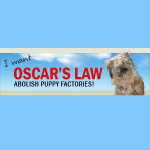 Oscars Law to Abolish Puppy Factories