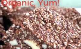 Raw, Vegan, Chocolate Nut Slice – FODMAP Friendly