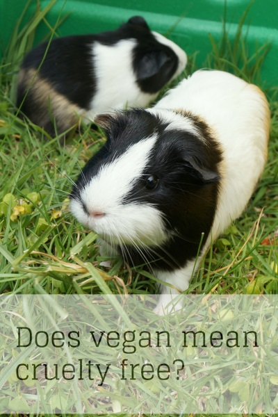 Vegan or Organic Does Not Necessarily Mean Cruelty Free