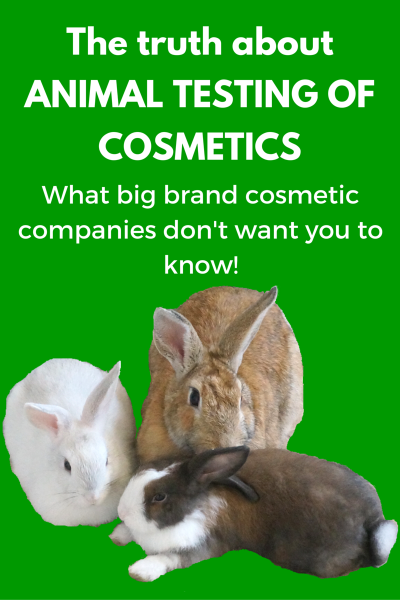 How Cosmetics Are Actually Tested On Animals