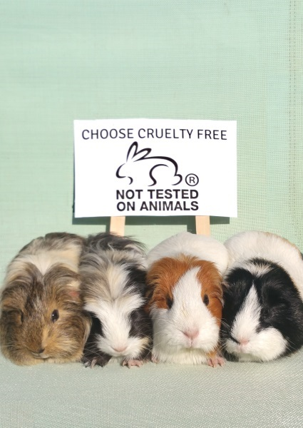 Choose Cruelty Free For Animals