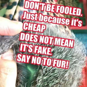 s It Real Fur Or Is If Fake Fur