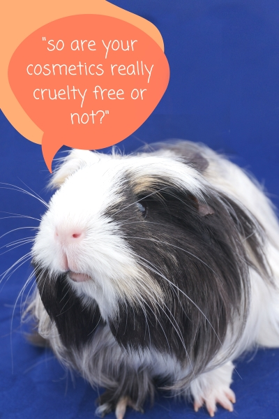 Cruelty Free Labelling of Cosmetics The Truth