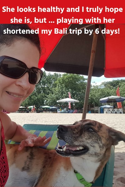 Travel Vaccinations My Bali Rabies Story