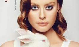 How To Help Stop Animal Testing of Cosmetics