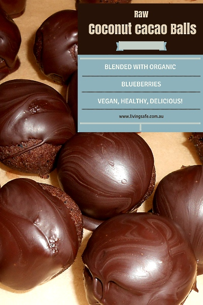 Raw Coconut Cacao Blueberry, Vegan Bliss Ball Recipe