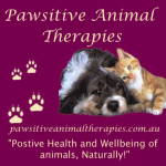 pawsitive natural animal therapies
