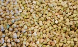 Buckwheat Health Facts