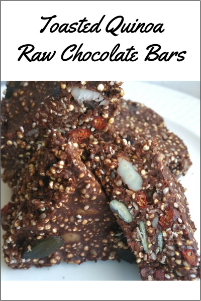 Toasted Quinoa Raw Chocolate Seed Bar Recipe